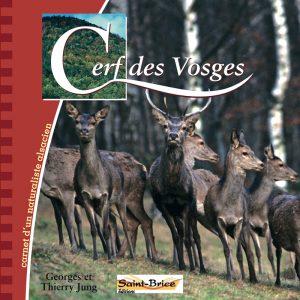 Cerf des Vosges